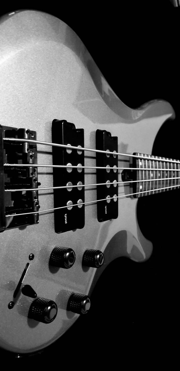 Silver Bass