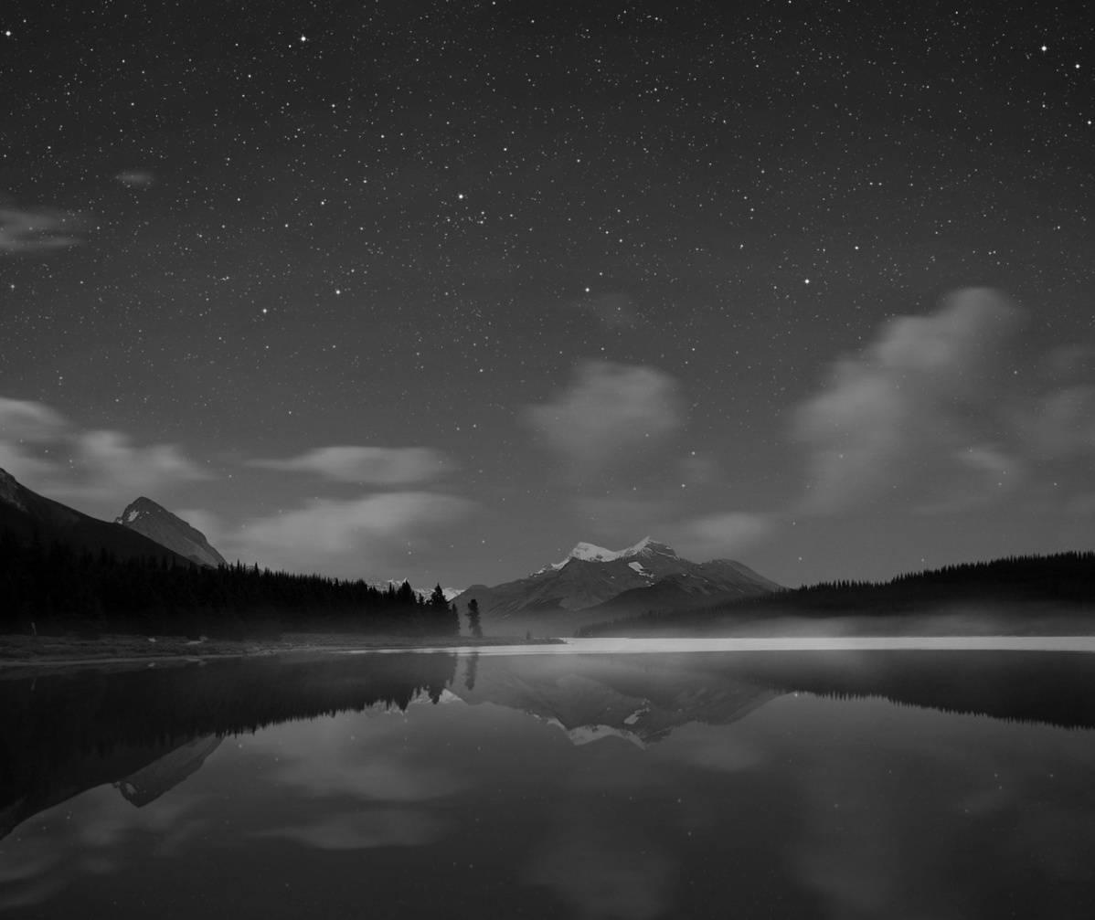 Nature In Night