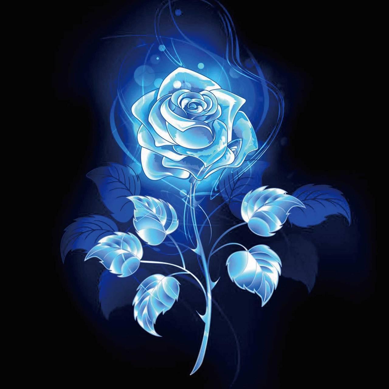 Blue Rose wallpaper by whisperedenvy1966460 - 69 - Free on ZEDGE™