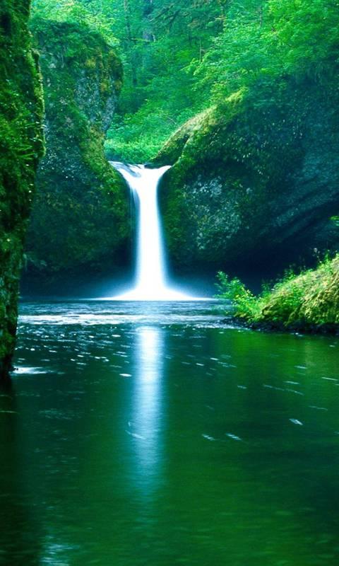 Water Fall Scene