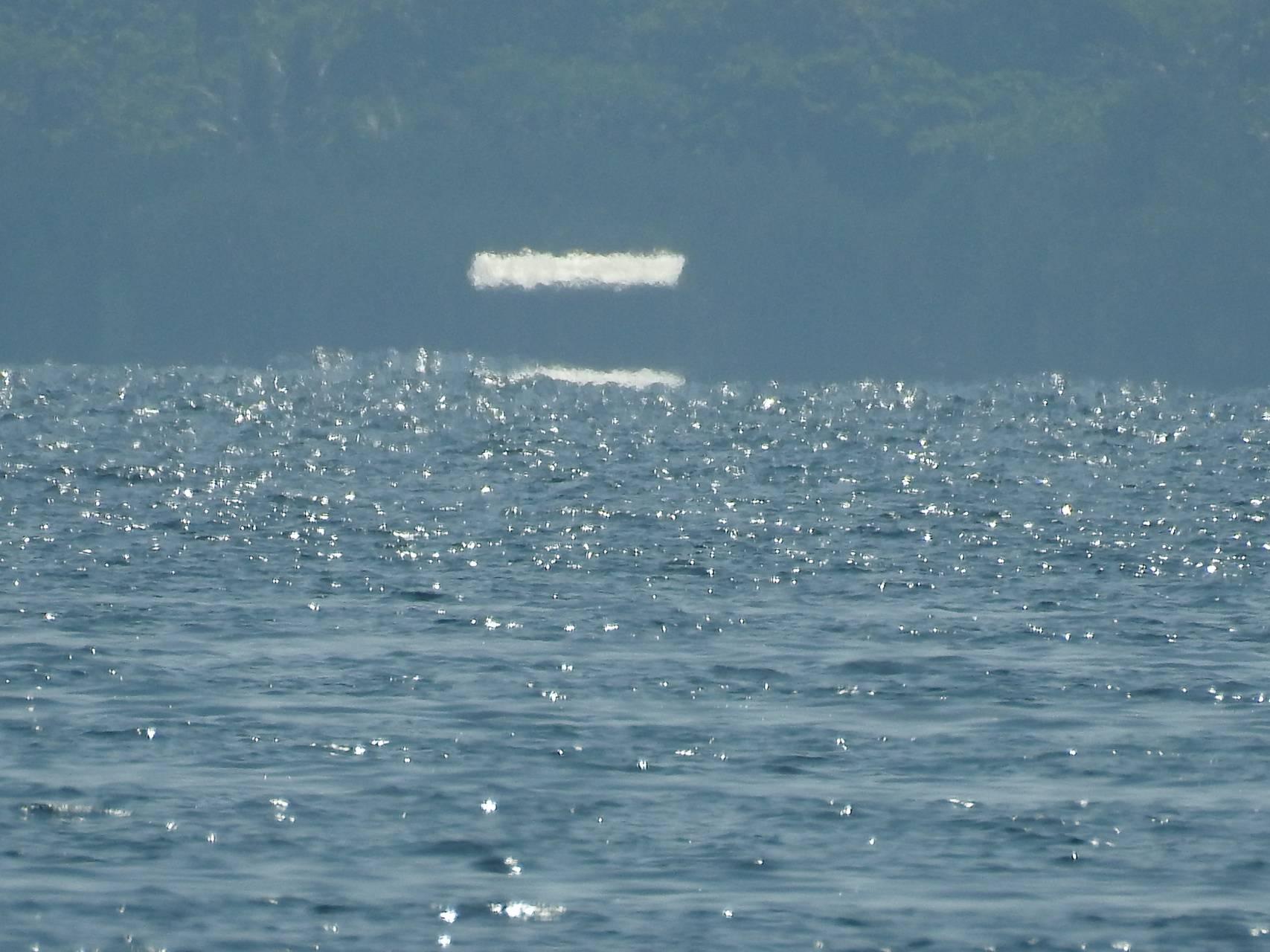 Water Illusion