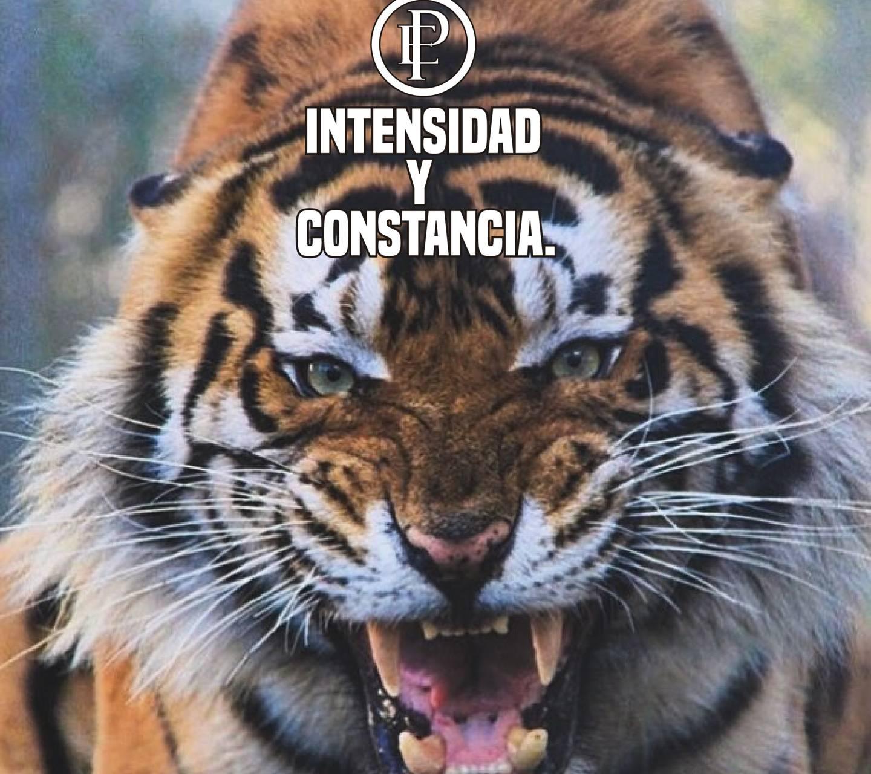 intensidad