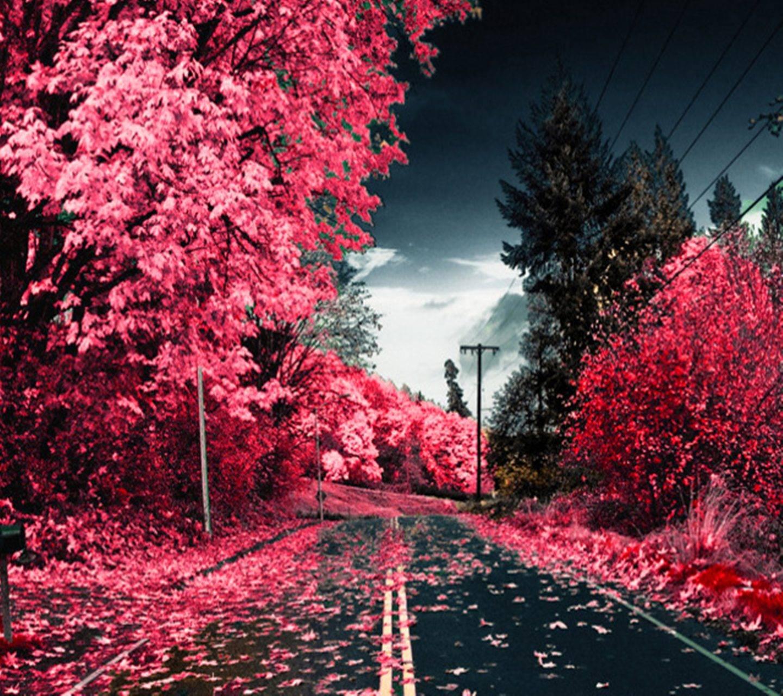 Pink Way