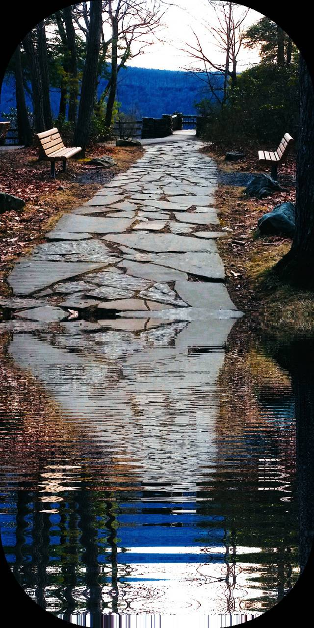 Path to water