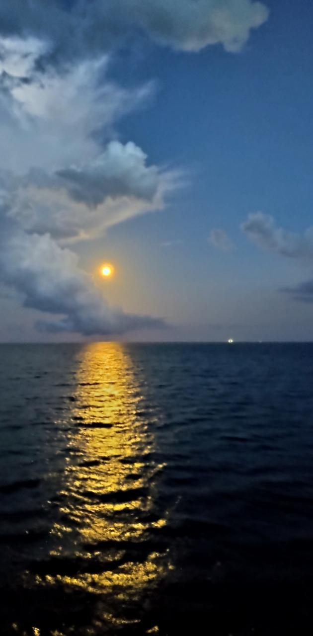 Morning in da Gulf
