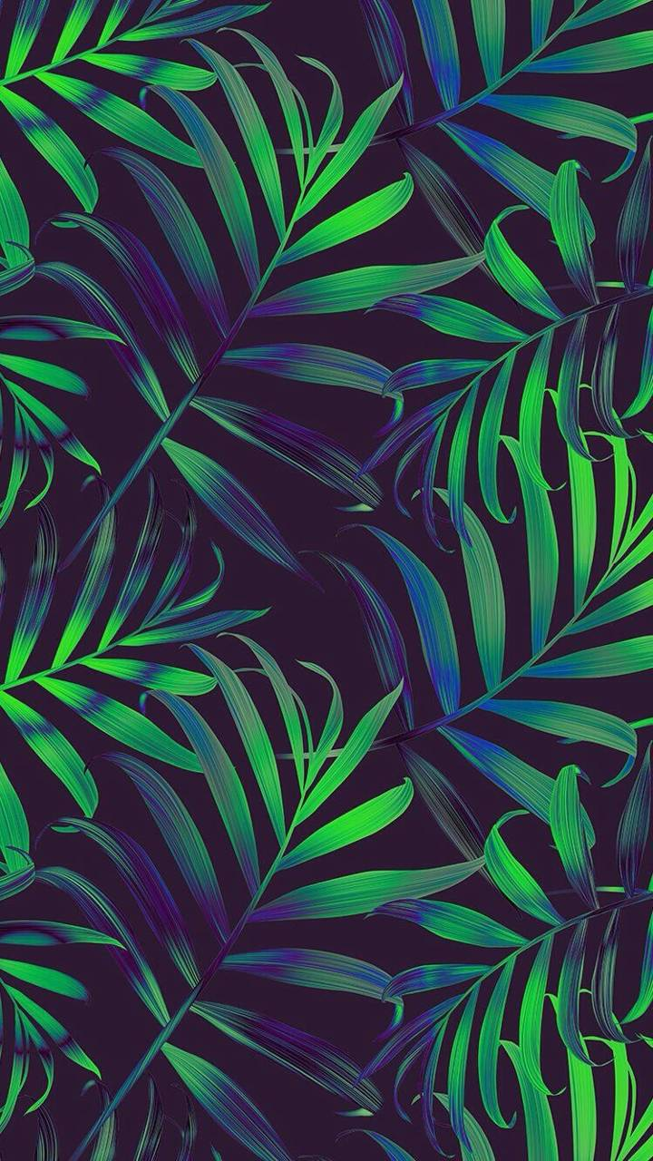 Tree Leaves S20 Wallpaper By Mobilewallpapers A4 Free On Zedge