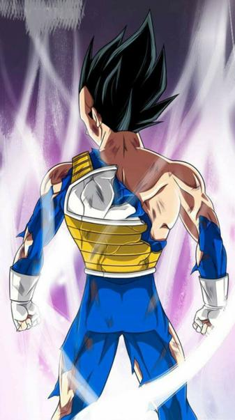 Goku Vegeta full