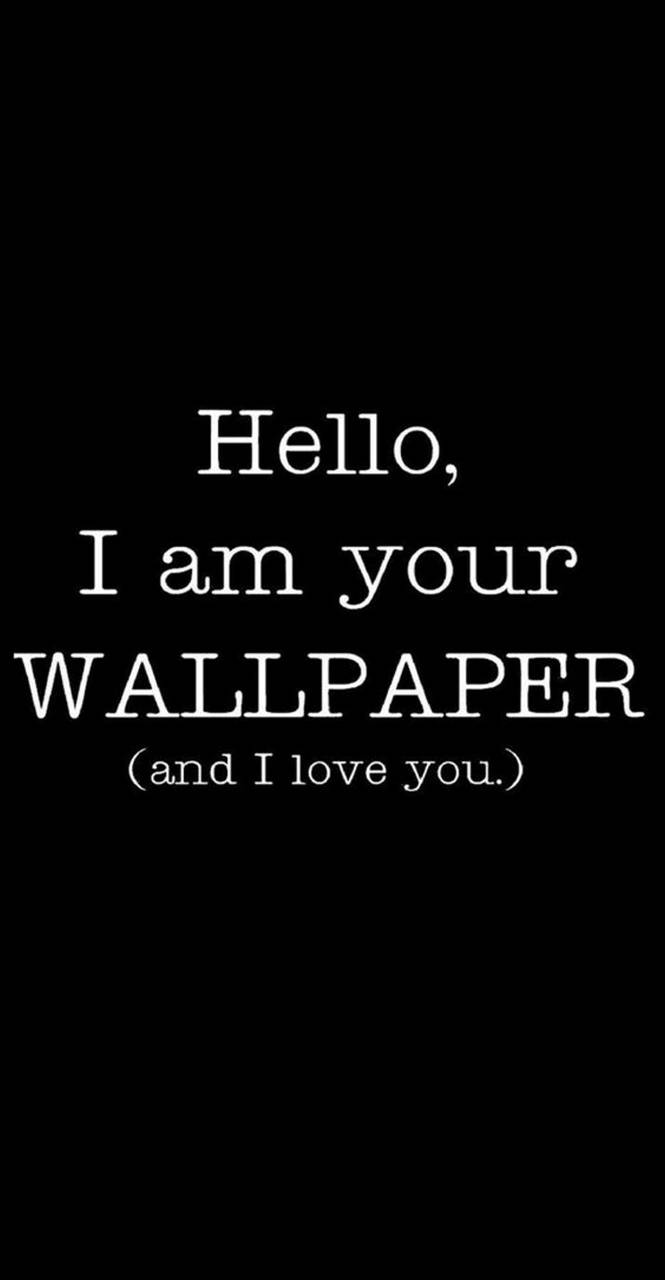 Funny Wallpaper