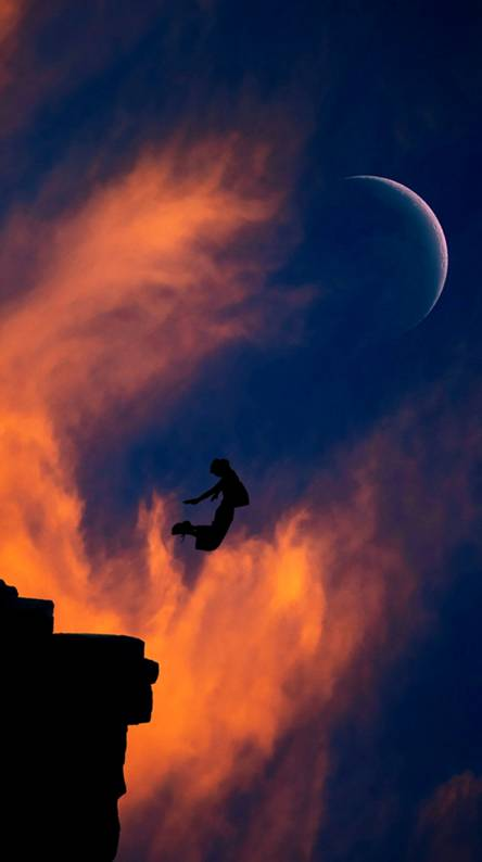 Fly To The Moonlight