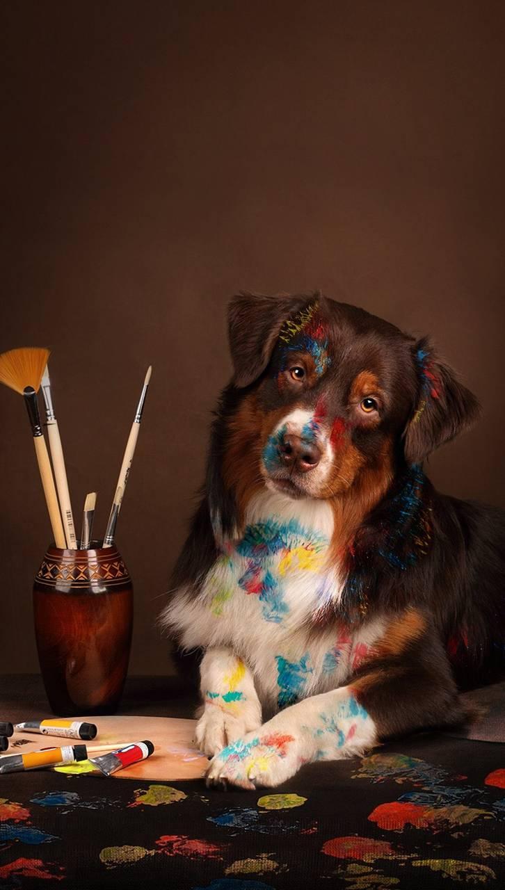 Picasso s dog