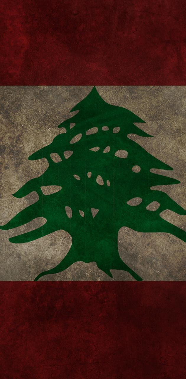Lebanon Flag 1
