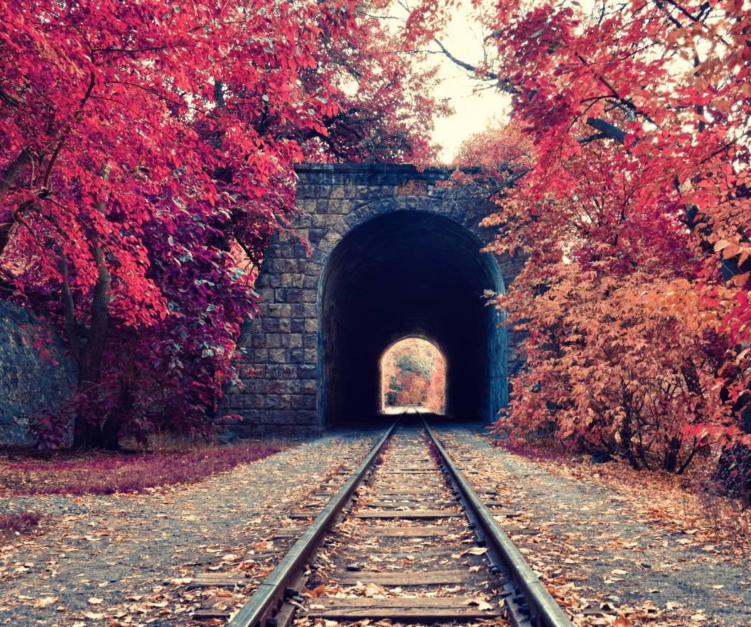autumn railway hd