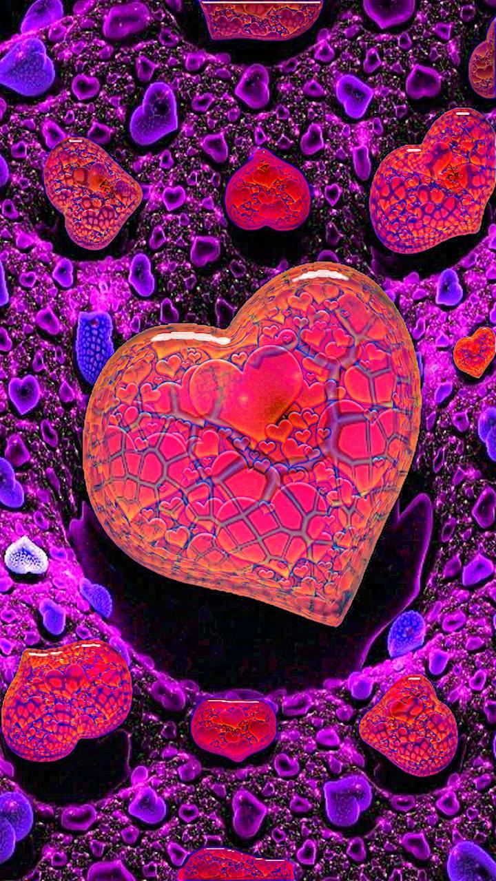 Love Anemones