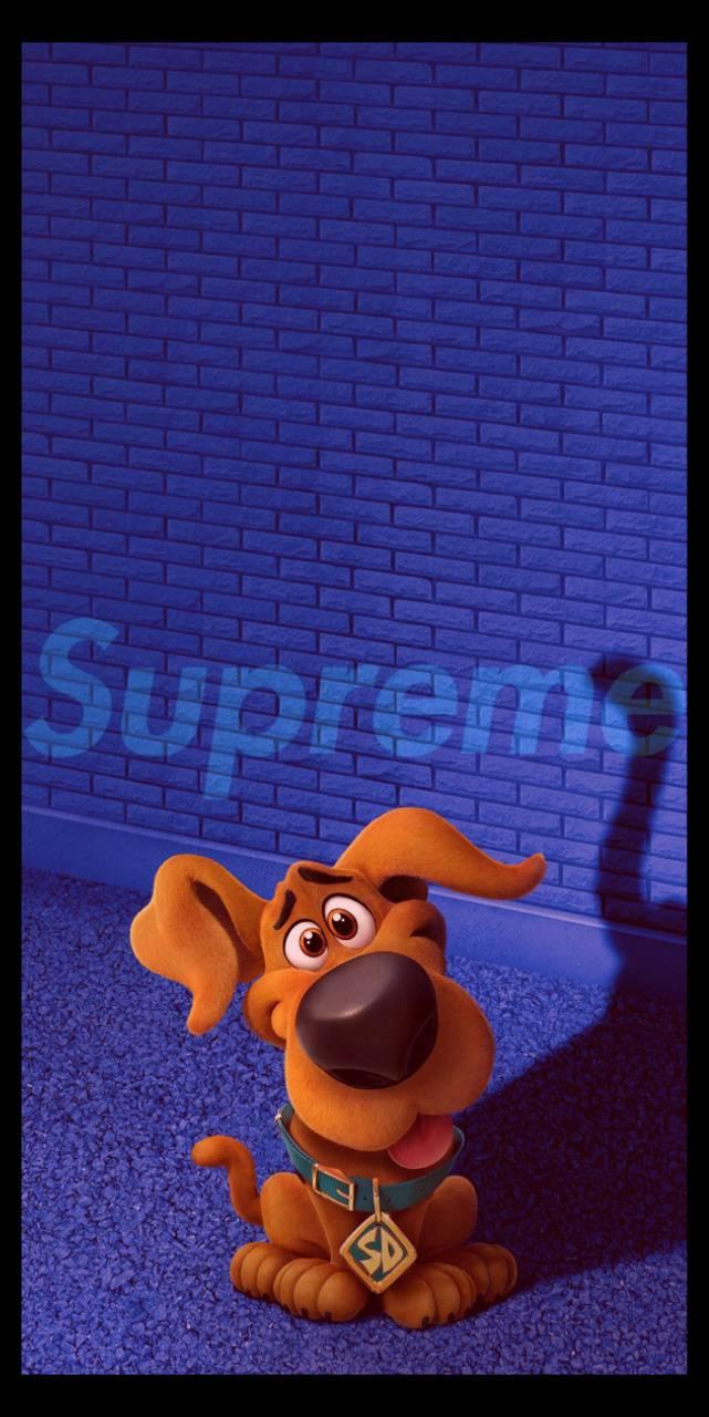 Supreme Scoob