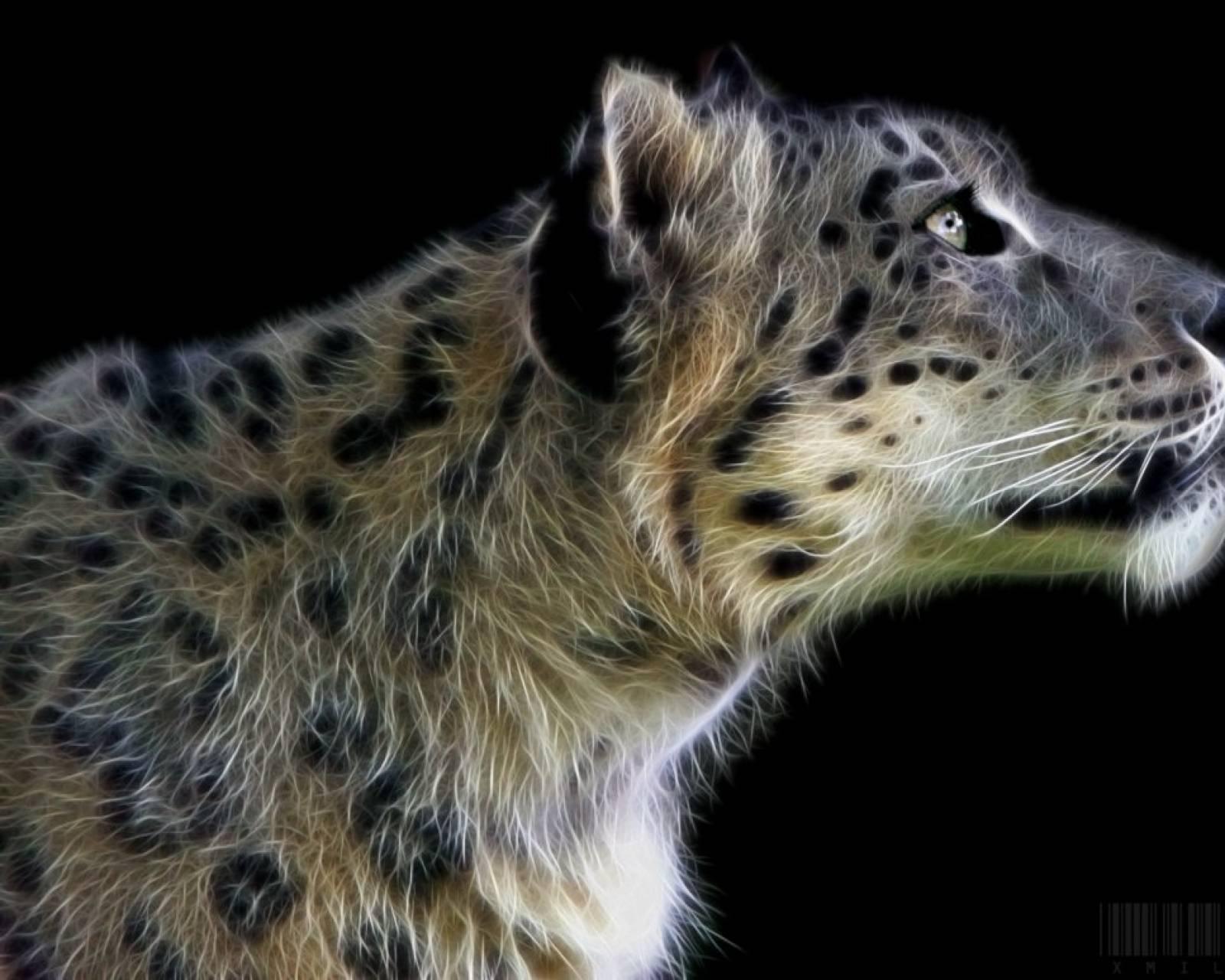 snow leopard fractal
