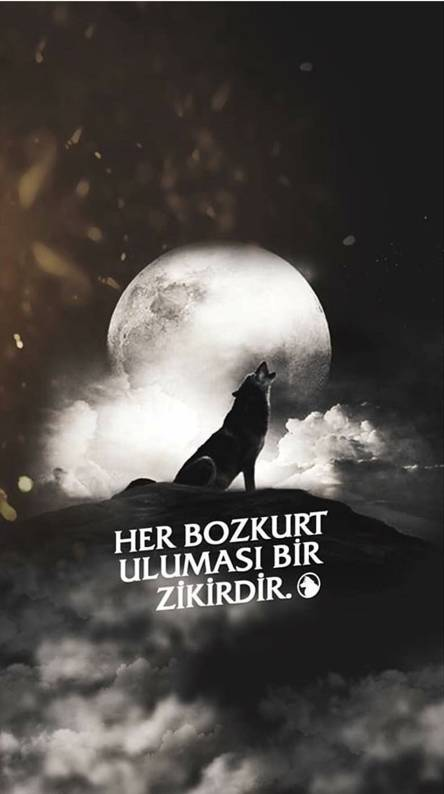 Bozkurt Wallpapers - Free by ZEDGE™