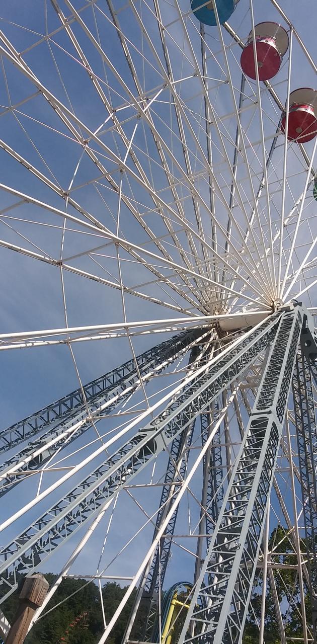 Farris wheel
