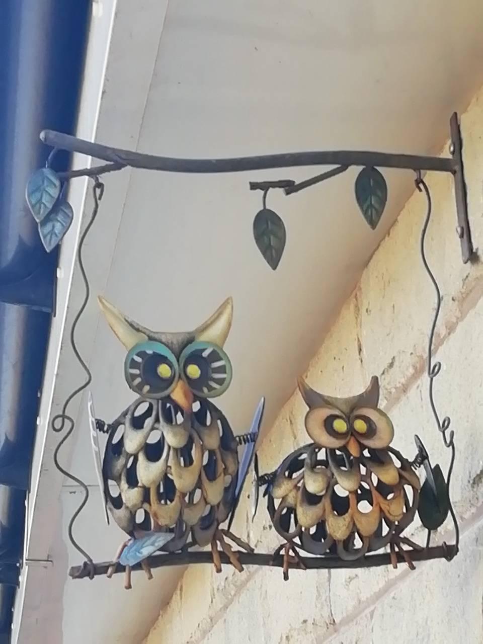 Owls chillin