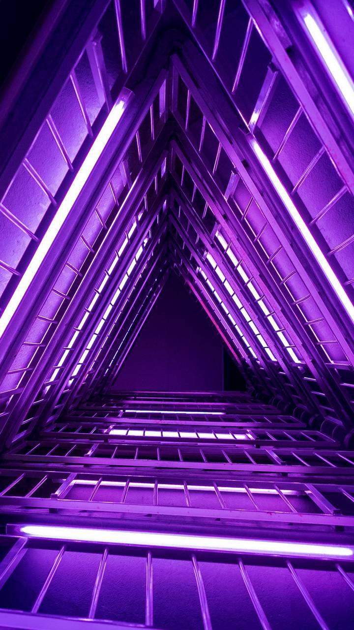 Ladder Purple