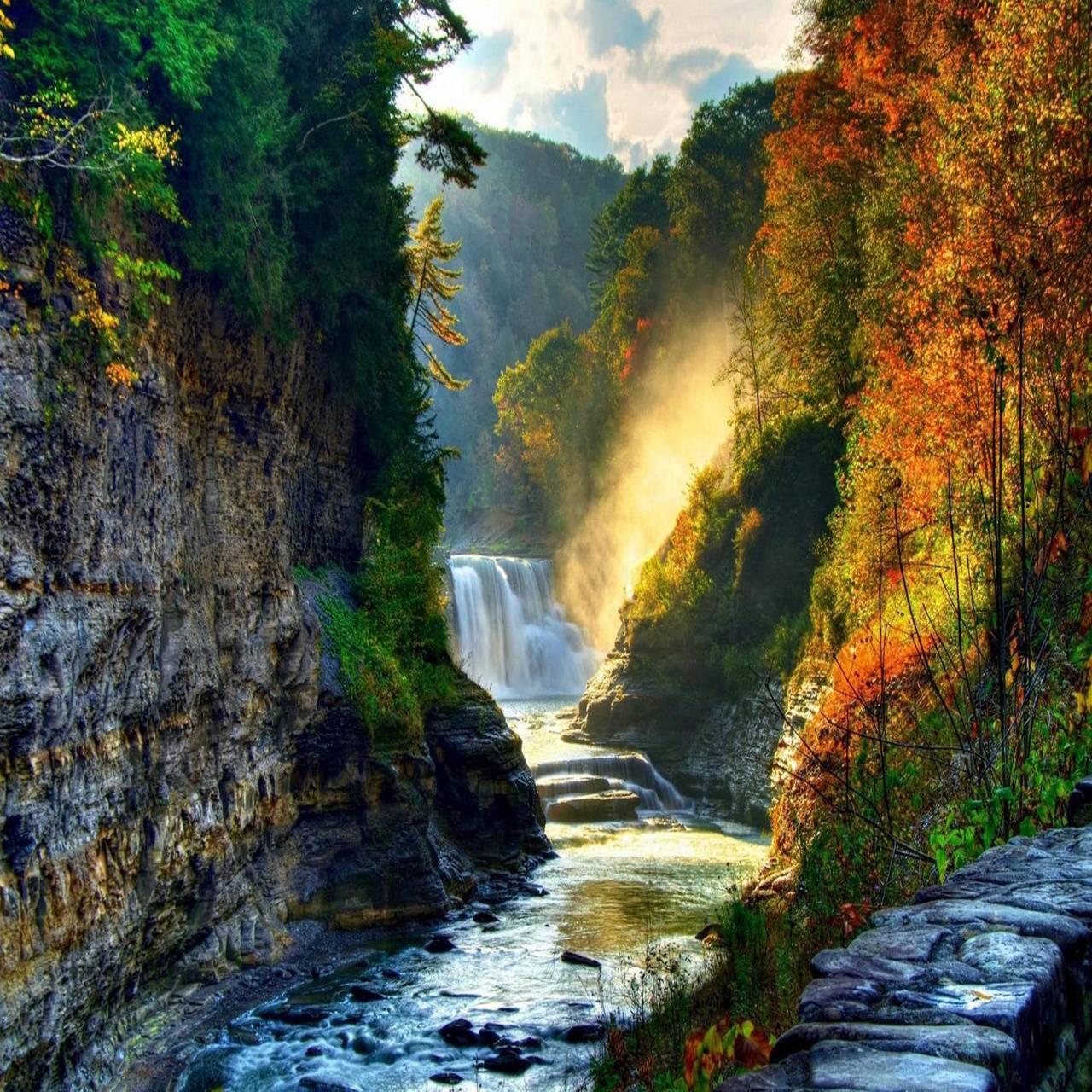 Sunshine nature