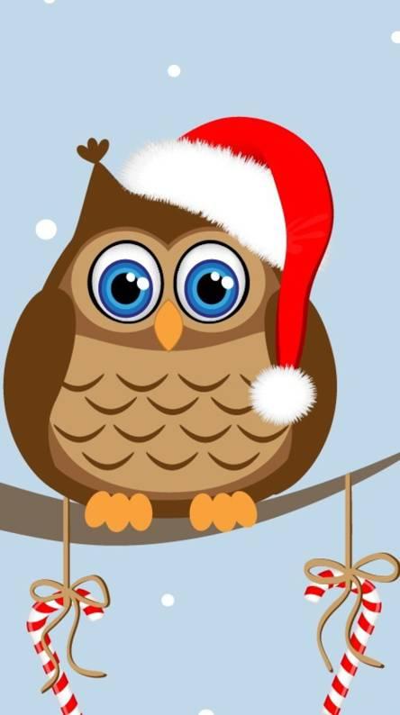 Christmas Owl Owl