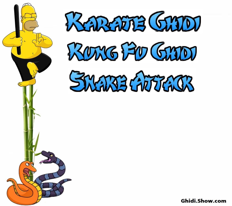 Karate Ghidi