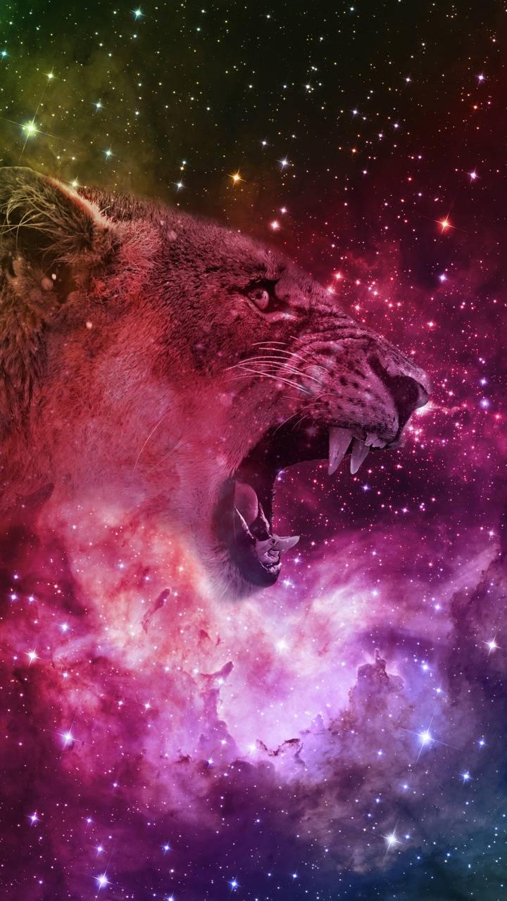 Tiger deep space