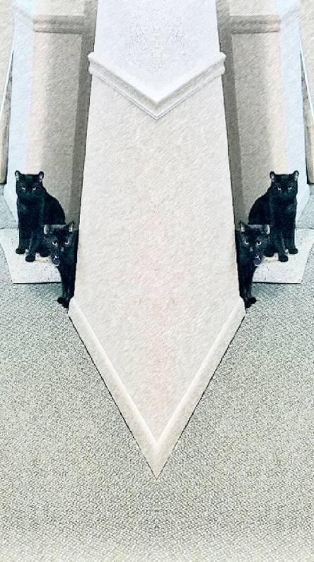 Twoblaquecats
