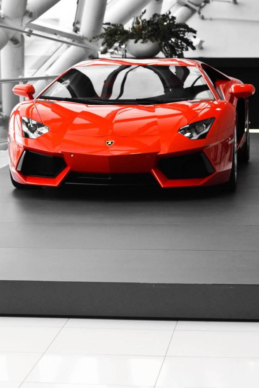 Nice Car1