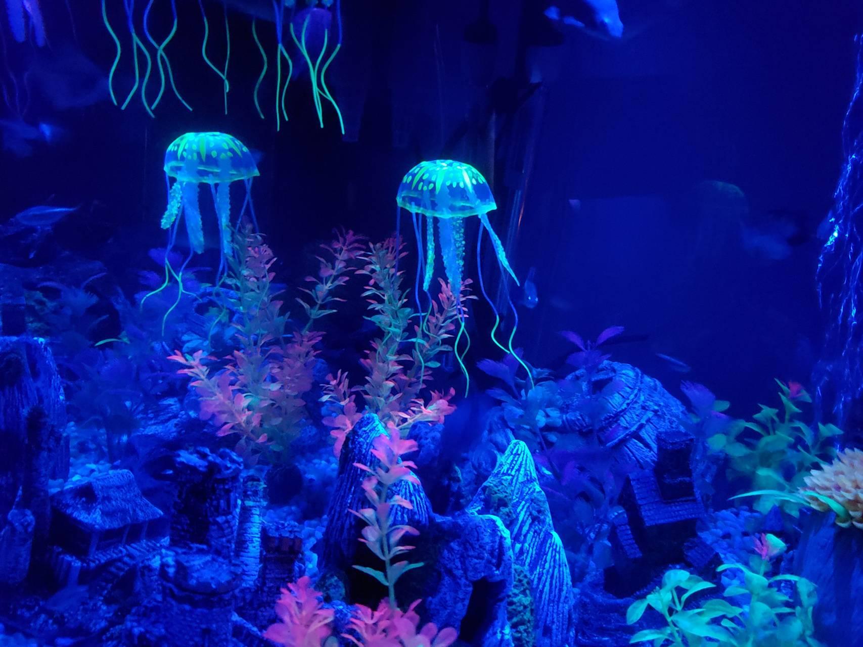 Imitation jellyfish
