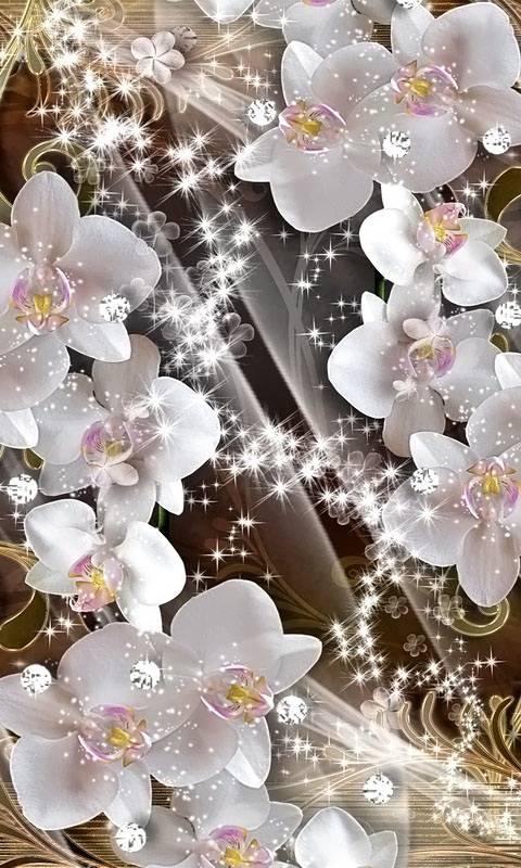 Orchids Diamonds