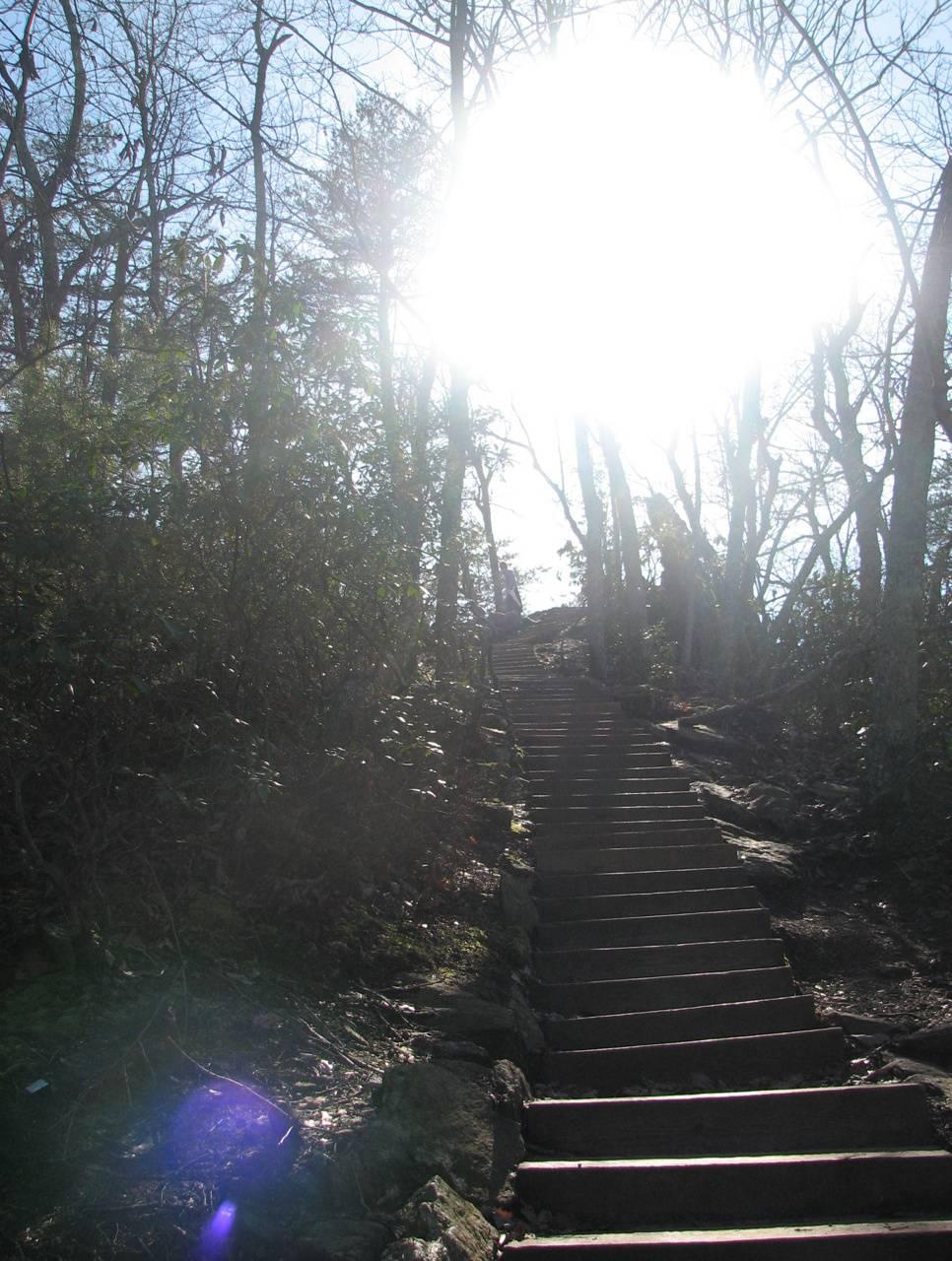 Steps At Crowders Mt