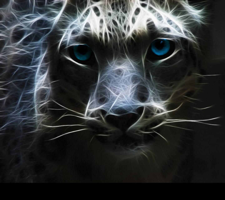 Great Cat