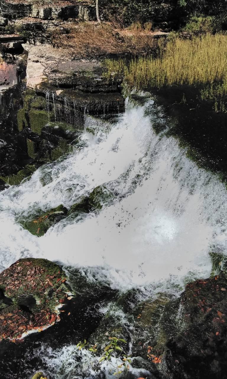 Nature Falls