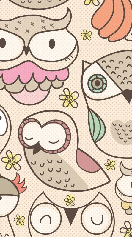 Owl Cute Owl