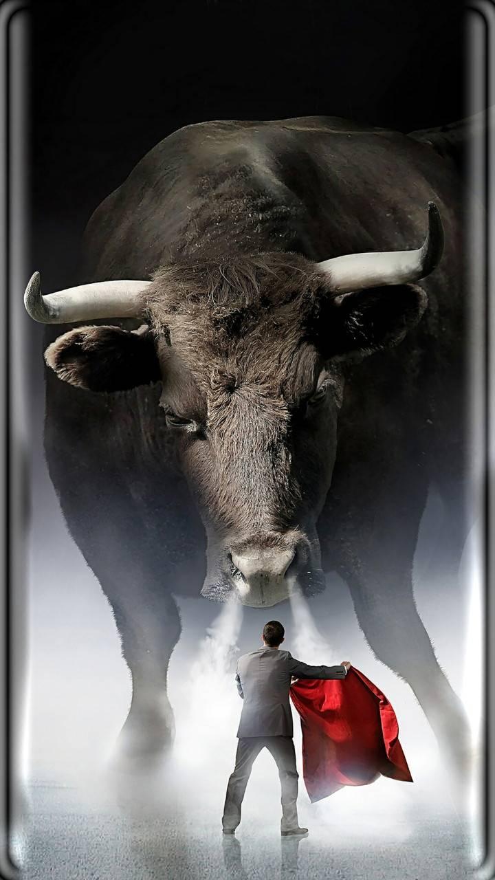Danger Bull