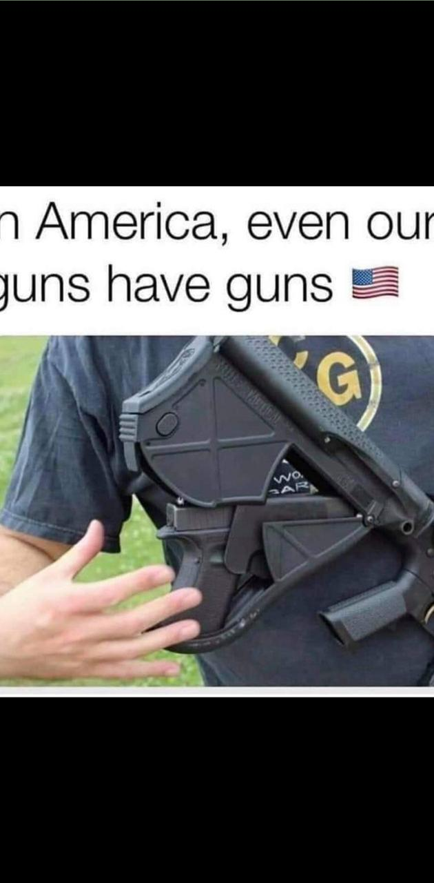 gun has a gun
