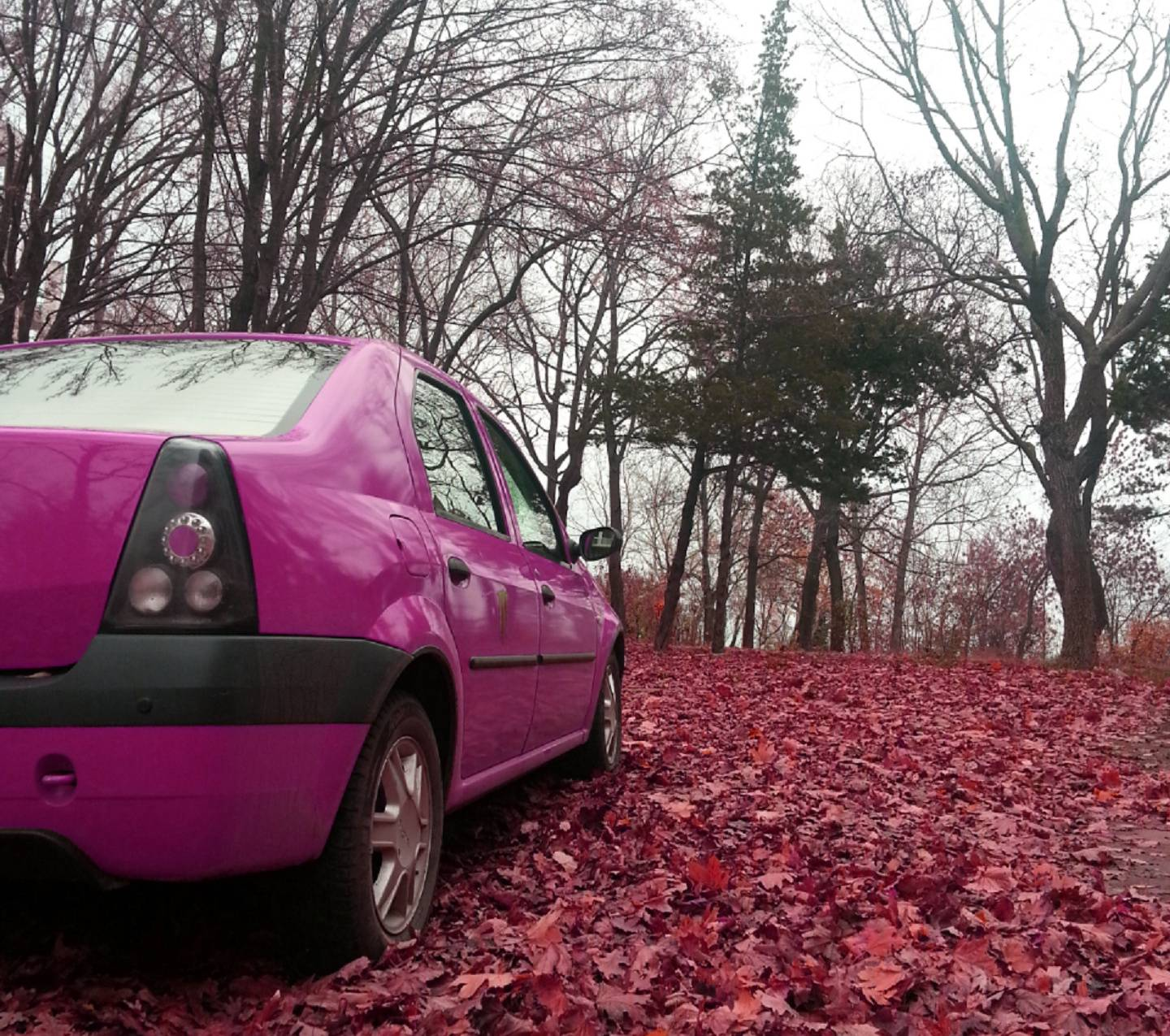 Pink Car In Nature