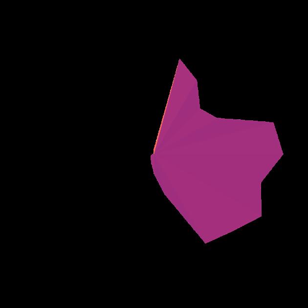 Hoot - Pixel 3