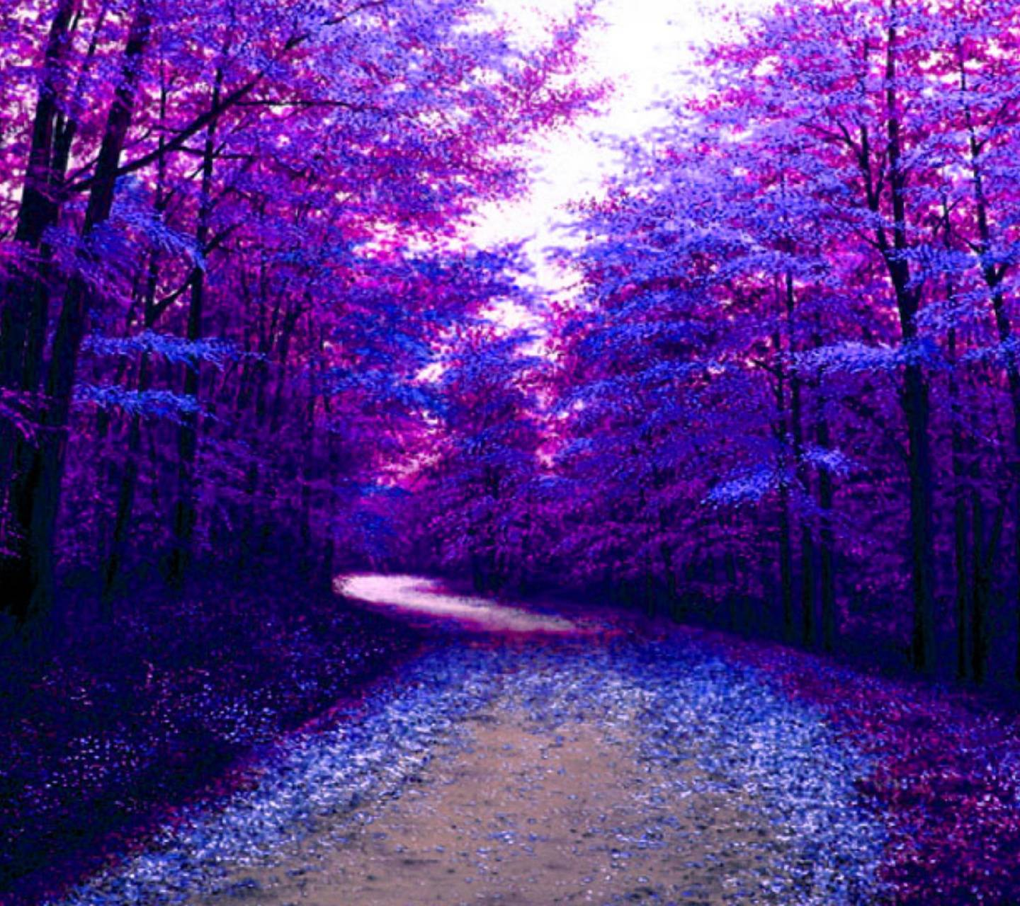 Purple Forest Wallpaper By Konig 32 Free On Zedge