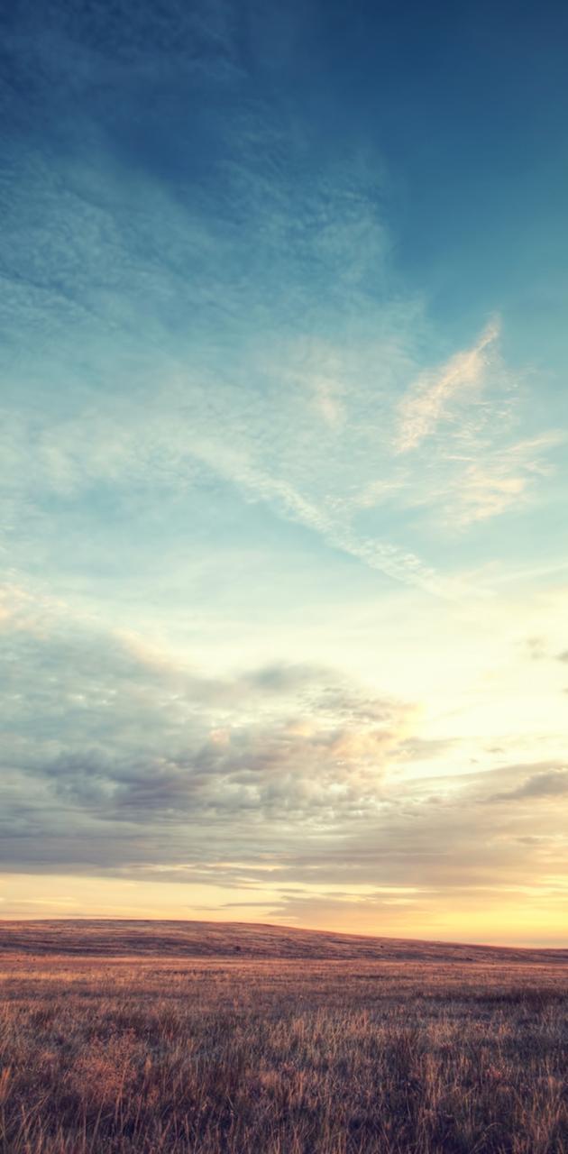 Field Dawn Sky