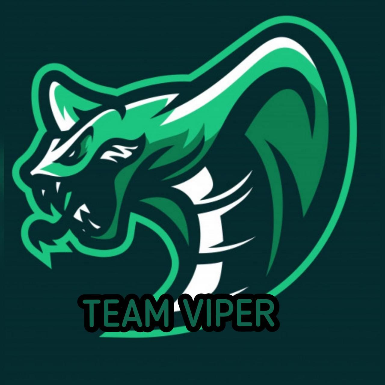 team vipper