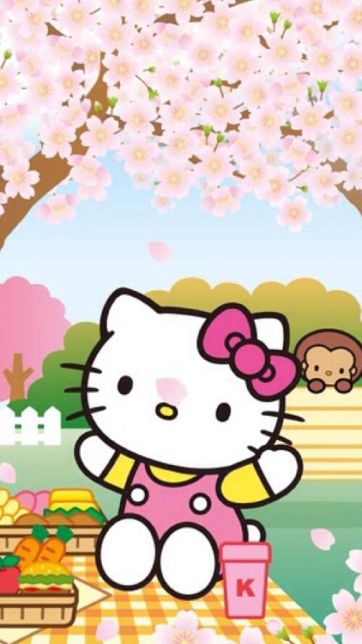 Hello Kitty Wallpaper By Zakum1974 D3 Free On Zedge