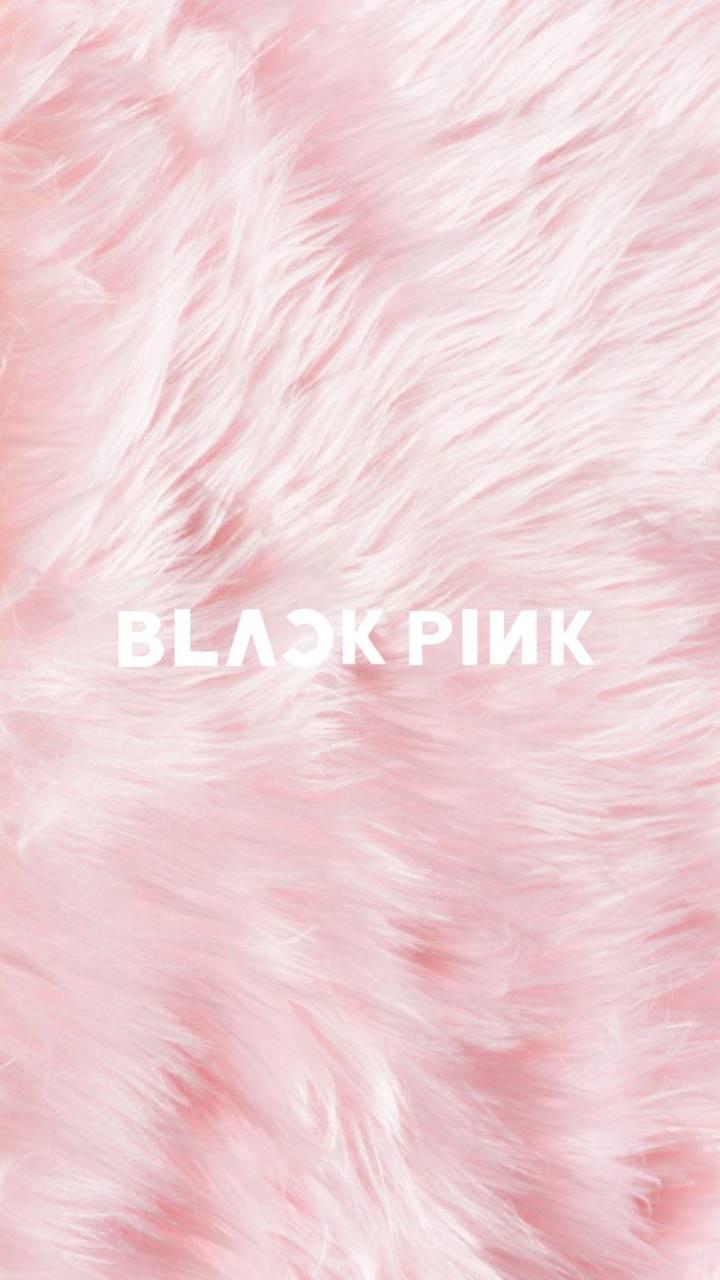 Blackpink Kpop