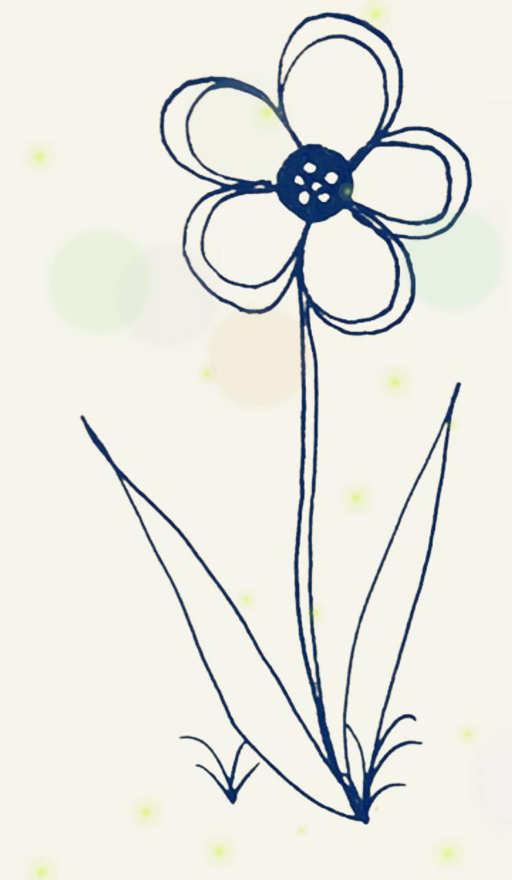 Firefly flower