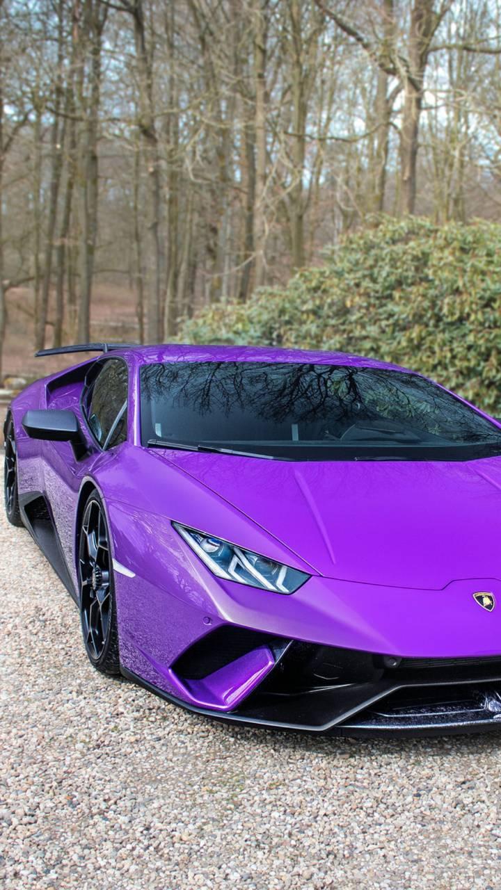 Purple Bull