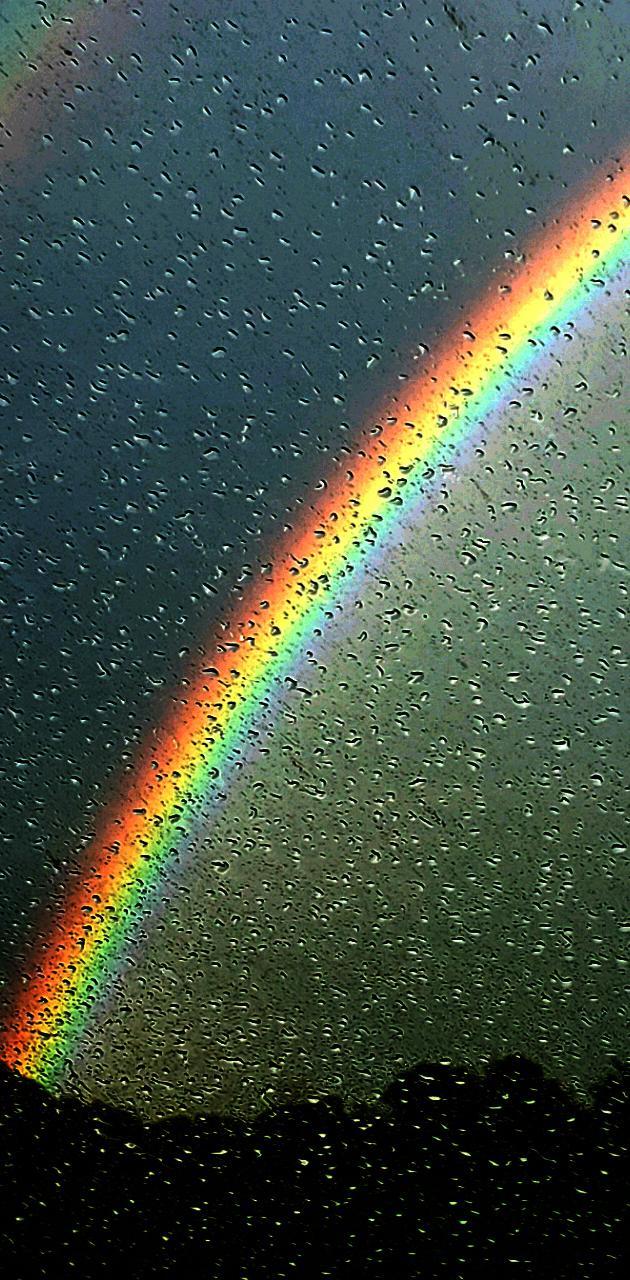 Amazing Rainbow