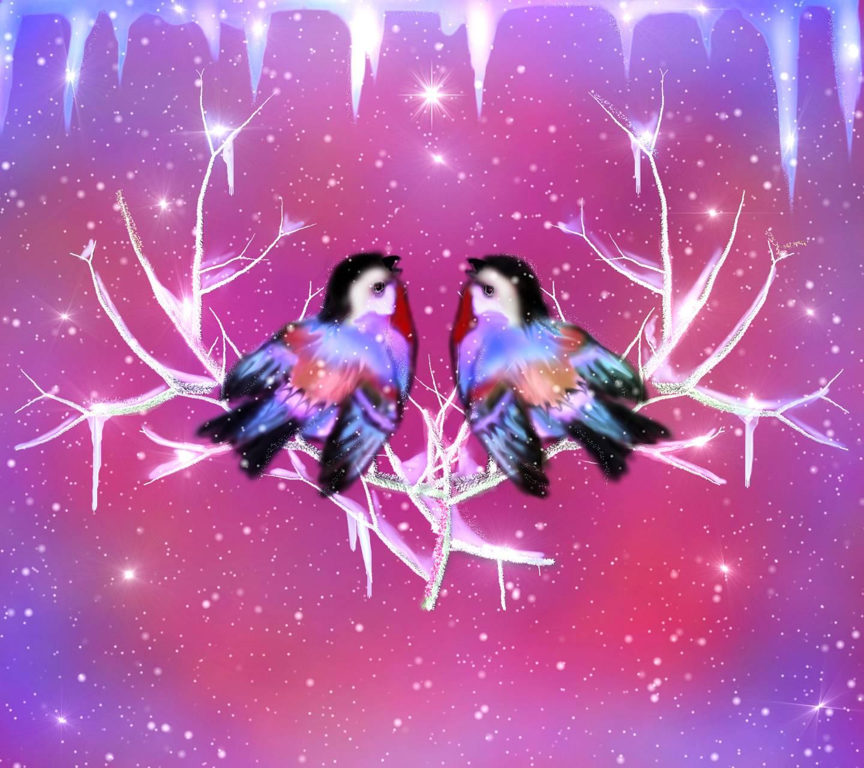 Two Birds 4