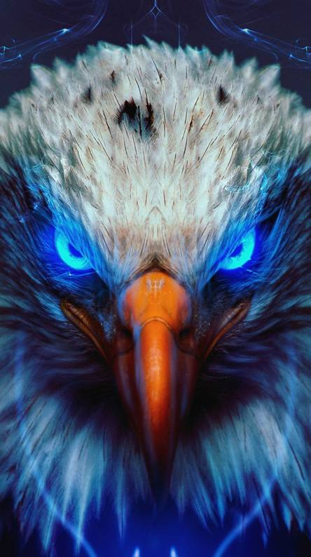 Bald Eagle Wallpapers Free By Zedge