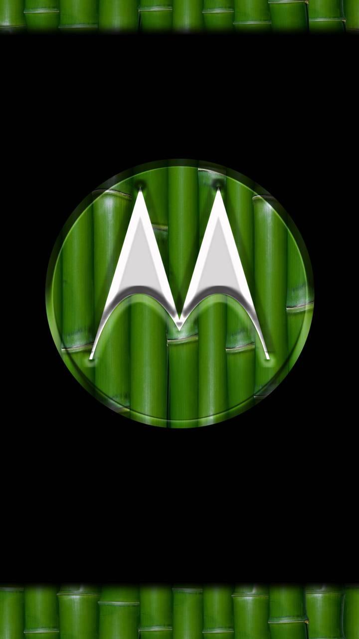 Motorola Bambu